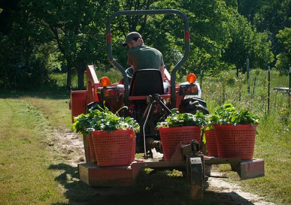 स्वास्थ्य,कृषि र रोजगारी सिर्जनामा बजेटको प्राथमिकता